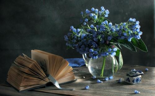 still-life-beautiful-beauty-blue-blue-flowers-499x311.jpg
