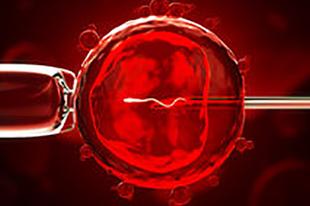 Humanlove genom