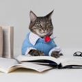 Mennyi a cicád IQ-ja?