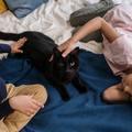 Csecsemőgyilkos macskák nem léteznek!