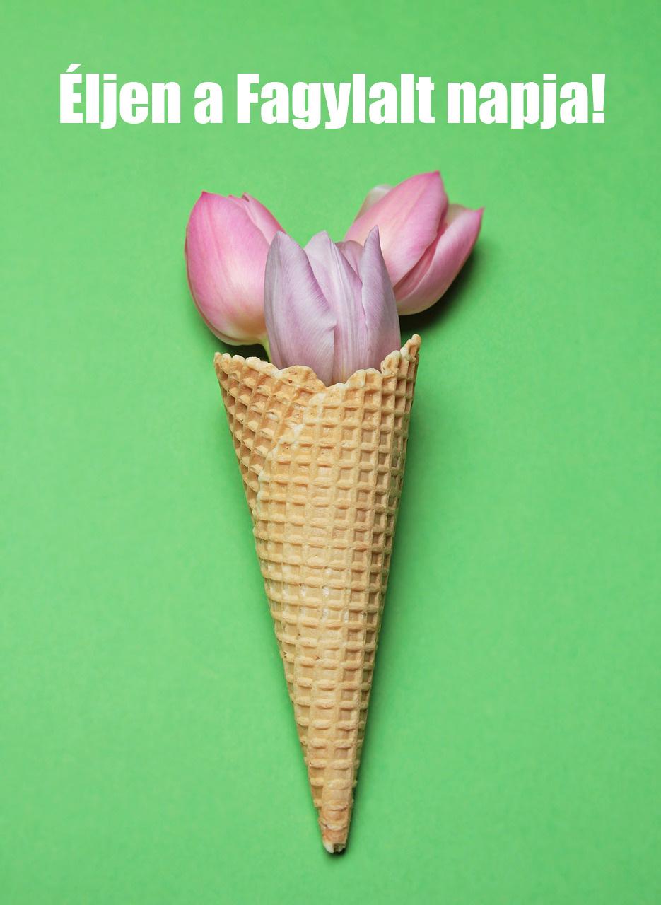 fagyinapja-tulipa_n.jpg