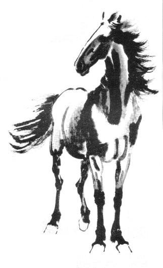 ló-kínai-kicsi.jpg