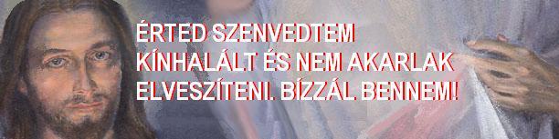 éRTED SZENVEDTEM KÍNHALÁLT.JPG