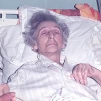 A SZERETETLÁNG ÜZENETE  (53. fejezet). Erzsébet asszony élete és halála 2 (1985)