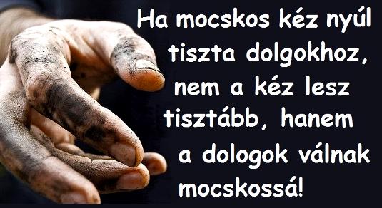 169ha_mocskos_kez_535.jpg
