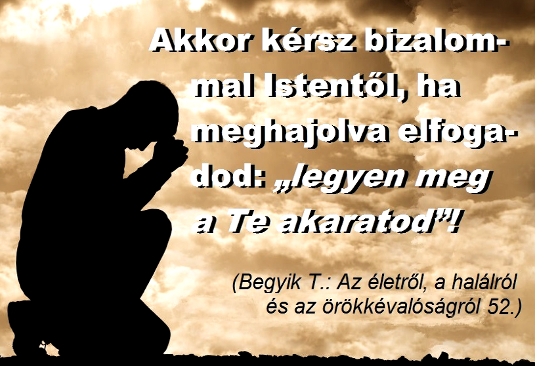 170akkor_kersz_535.jpg