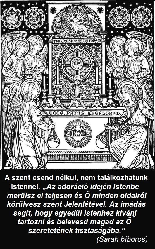 201a_szent_csend_nelkul_530.jpg