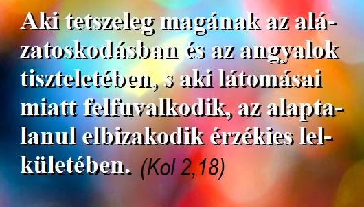 358aki_tetszeleg_530.jpg