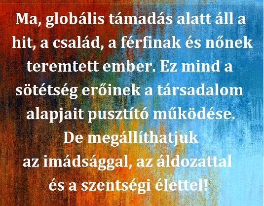 441ma_globalis_535.jpg