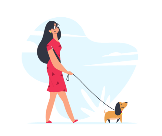 dog-walker_535.jpg