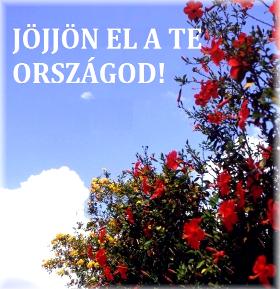 jojjon_el_280.jpg