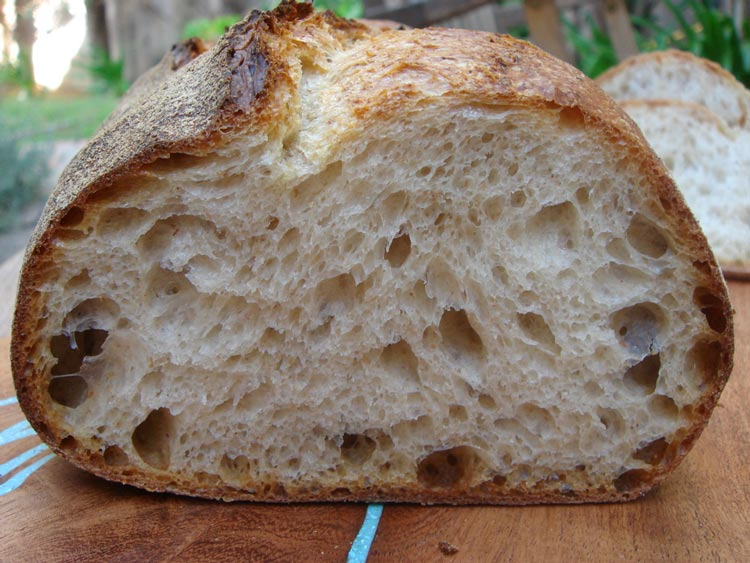 norwich-sourdough-crumb.jpg