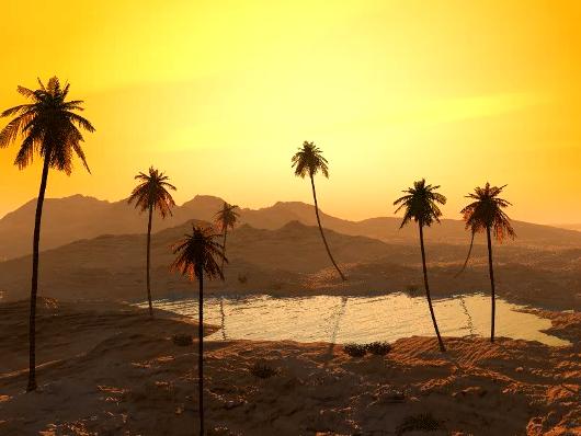 oasis_sunset_530.jpg