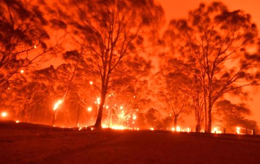 skynews-australia-fires_535.jpg