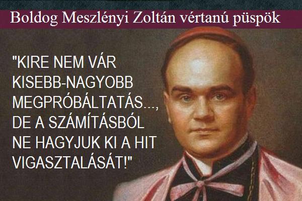 010_ Meszlenyi Zoltan_1.JPG