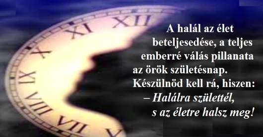 073ido_halal_530_4.jpg