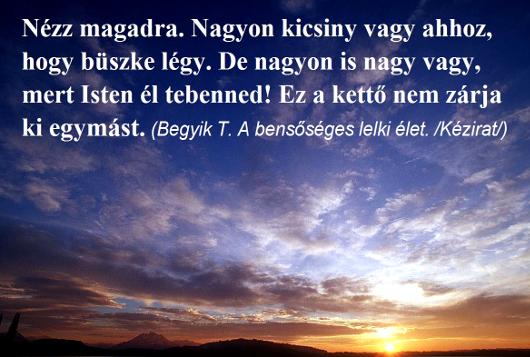 139nezz_magadra_530.jpg