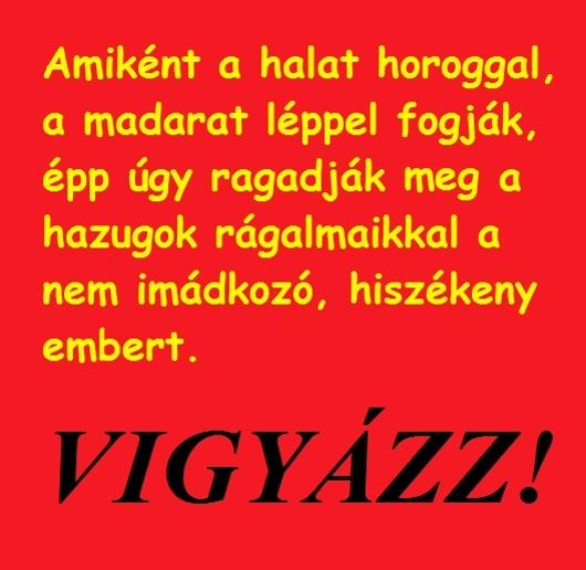 180vigyazz_530_1.jpg