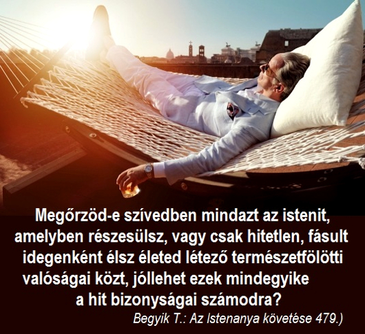 371megorzod-e_530.jpg