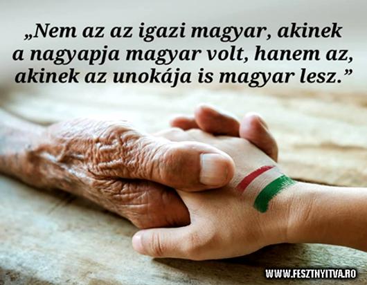 381nem_az_az_530.jpg