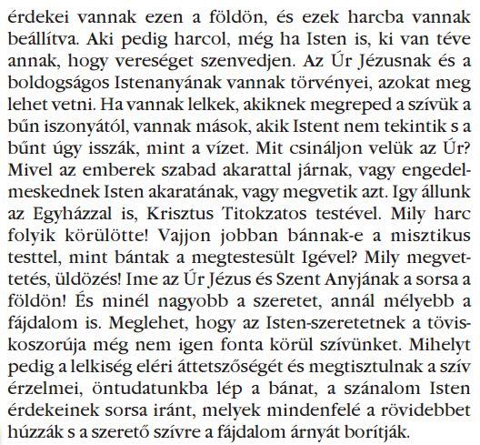 Hungaro 016.JPG