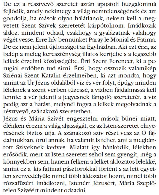 Hungaro 020.JPG