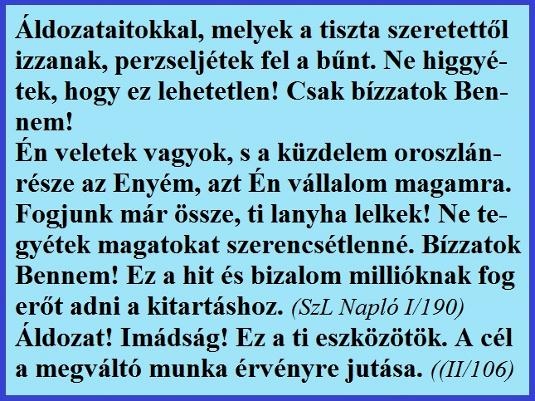 aldozataitokkal_535.jpg