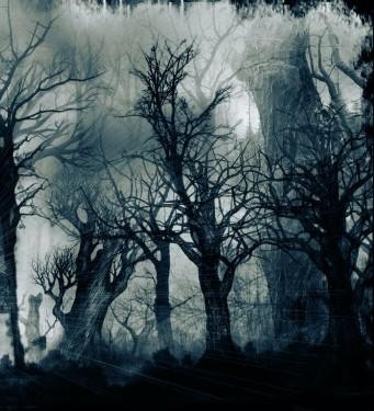 bosque_tenebroso.jpg