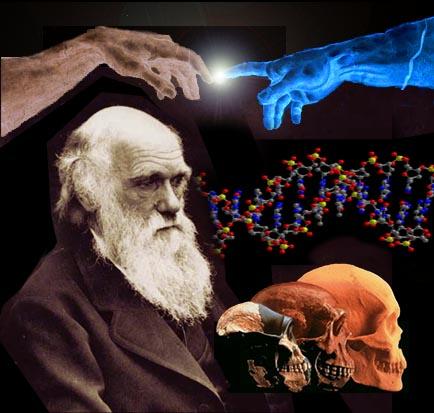 darwinismo-3.jpg