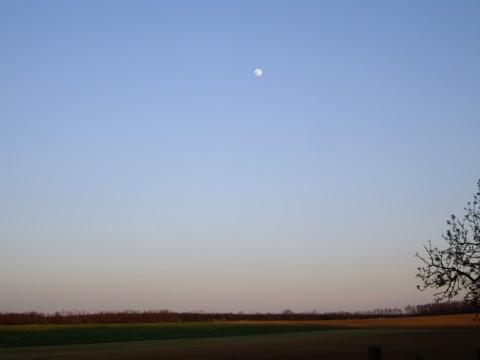 holdacskás.jpg