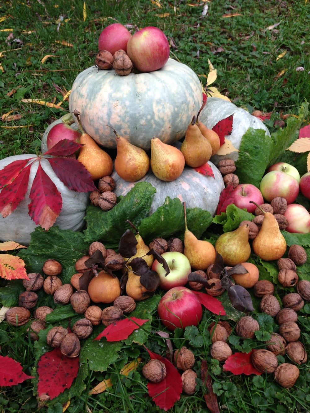 az összes gyümölcsöt mi szedtük, és van, ami ráadásul a kertünkben termett, mint a tök...