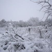 ma déltől szakadt a hó