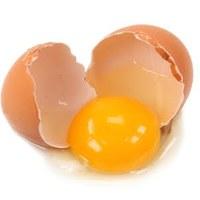 a tojás éltető ereje....