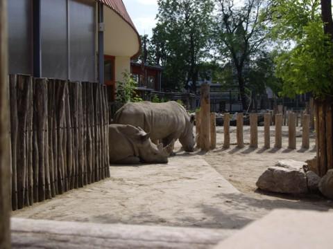 állatkert4.jpg