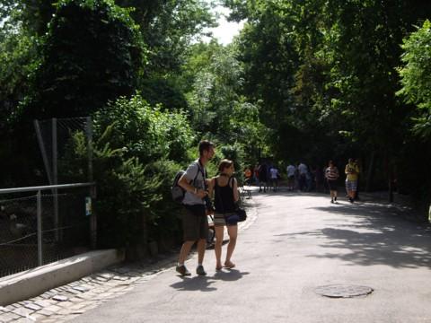 állatkert6.jpg