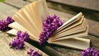 Hogyan indulj el a szerzői könyvkiadásban?