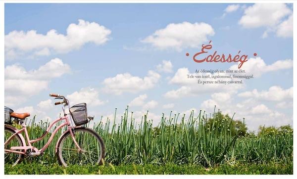 nyito-bicikli.jpg