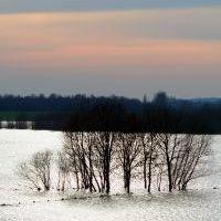 Családi fotókat is mentenek az árvízben