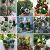 Horgolt kaktuszok