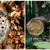 Méhecskehotel készítése hulladékfából