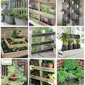 Inspirációk fűszerkertekhez