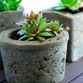 Virágtartók és ültetőedények hobbibetonból