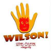 Wilson Klub, 2. fejezet - Mókás akvárium készítése kartondobozból a kisebb kreatívkodóknak