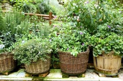 garden - gardening - garden ideas - garden barrel planters - wood barrel planters DIY garden ideas gardening - wicker basket garden planter via pinterest2.jpg