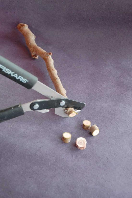 NH-JA09-wood-slice-cut-on-purple.jpg