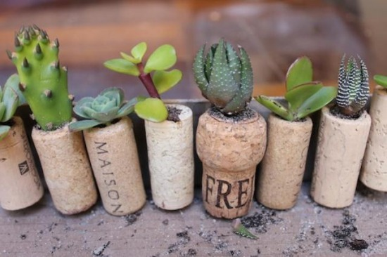 cool-diy-mini-magnet-garden-5.jpg