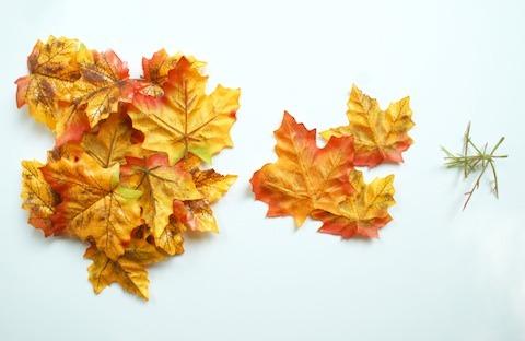 diy-leaf-bowls4.jpg