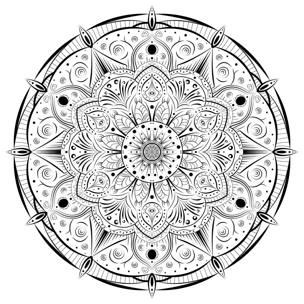 2_129.jpg