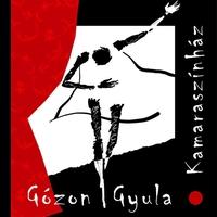 A Gózon Gyula Kamaraszínház ügyvezetői munkakörbe keres munkatársat