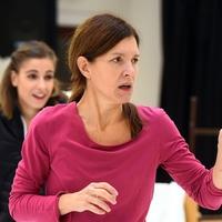 Betegség miatt elhalasztja bemutatóját a debreceni Csokonai Színház